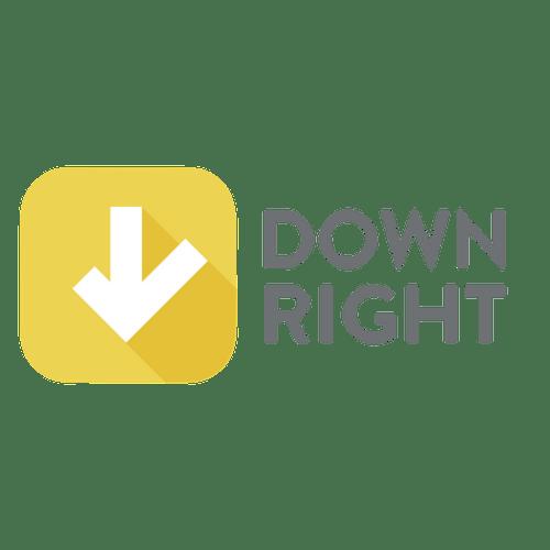 customer feedback solutions