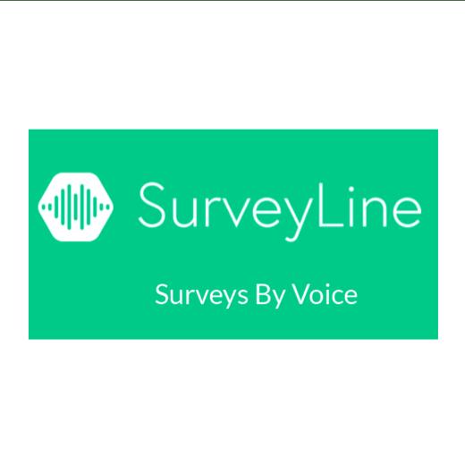 SurveyLine logo