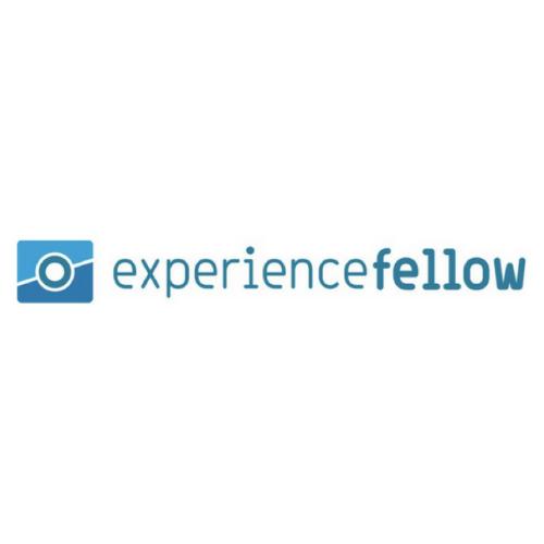 Experience Fellow Logo Square Insight Platforms