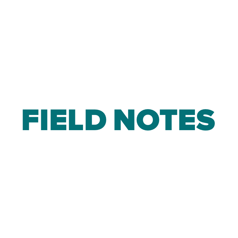 field notes square 1