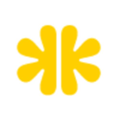 Brainster Square Logo InsightsPlatform